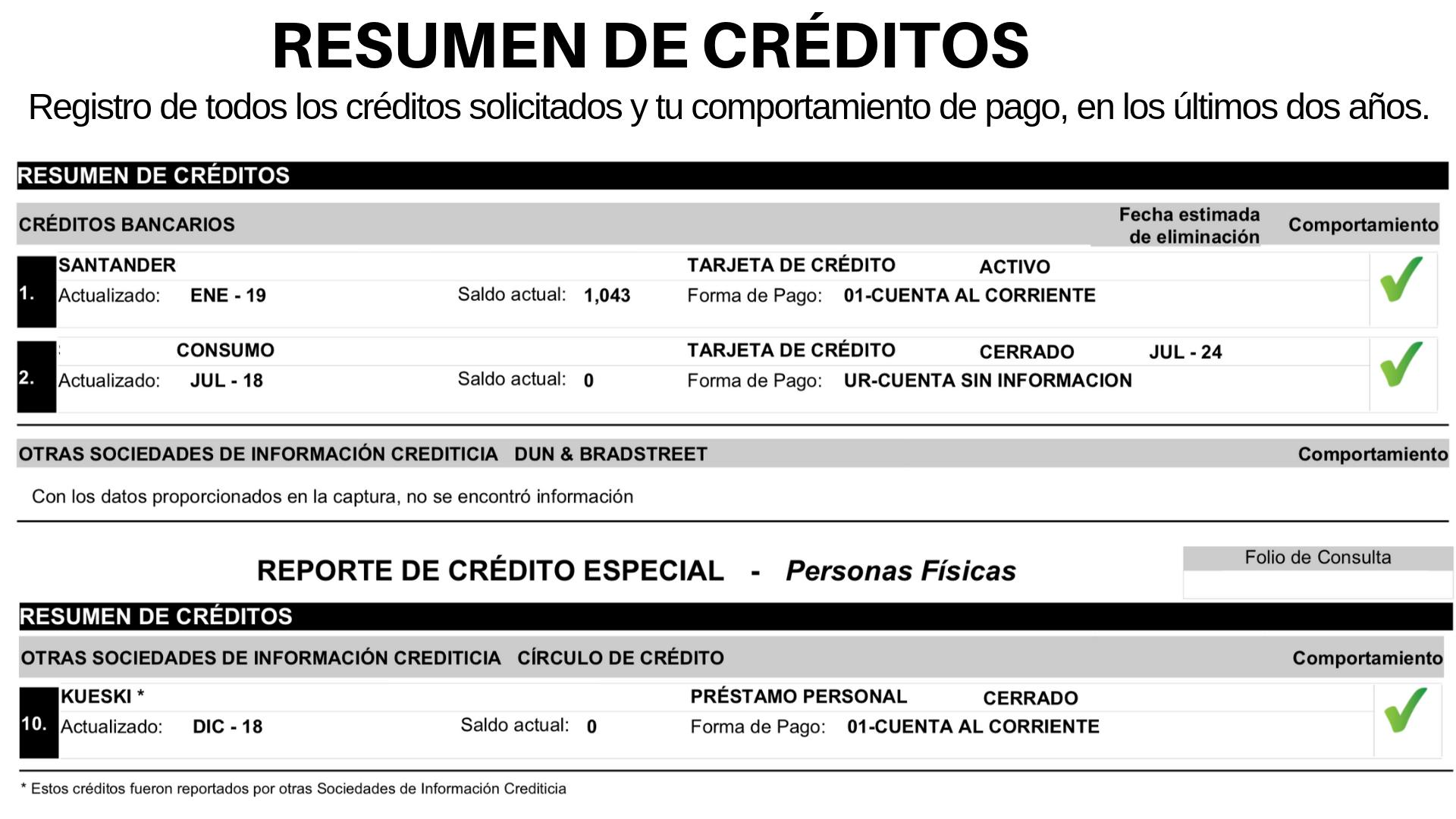 Resumen de créditos- reporte de crédito especial