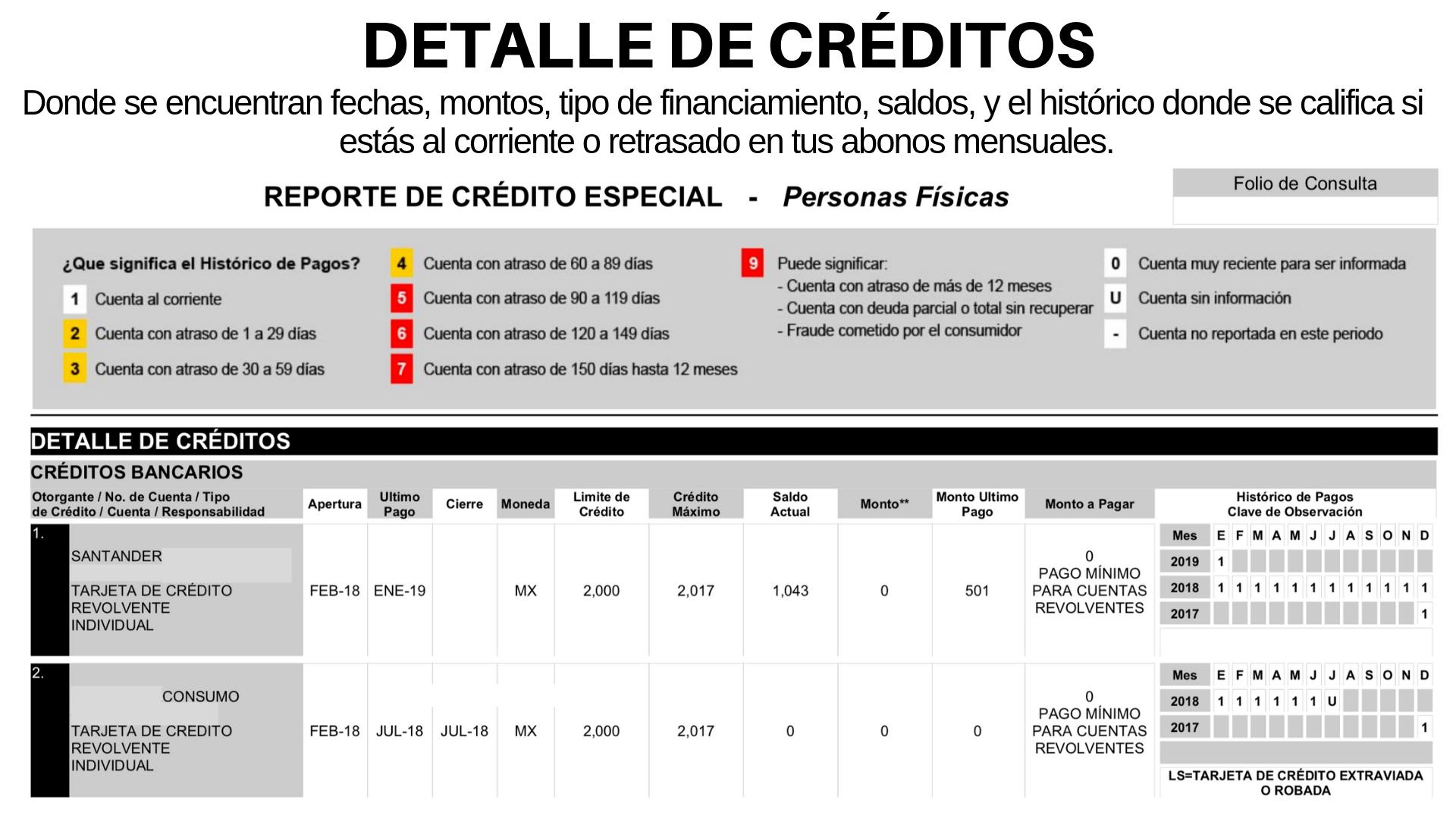 Detalle de créditos - reporte de crédito especial